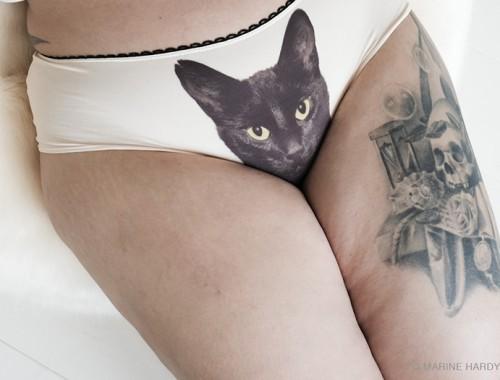 lickstarter-panties-cat-lingerie-blogueuse